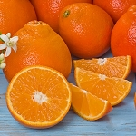 Sweet 'n Juicy Honeybells