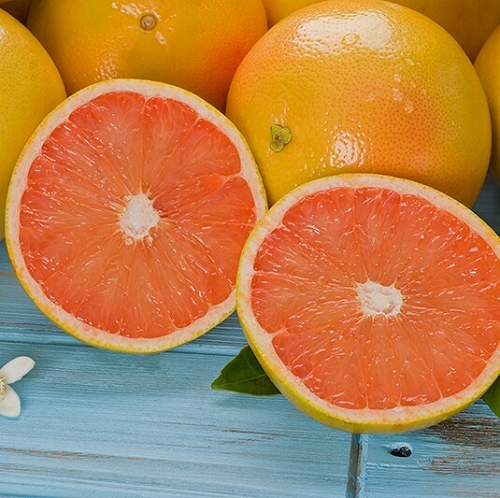 Florida Ruby Red Grapefruit
