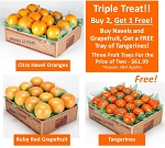 Sunny Monday Special - Buy 2-Box Navel Combo with FREE Tangerines